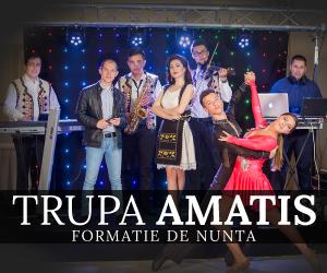 Amatis - formatie pentru nunta in Bucuresti