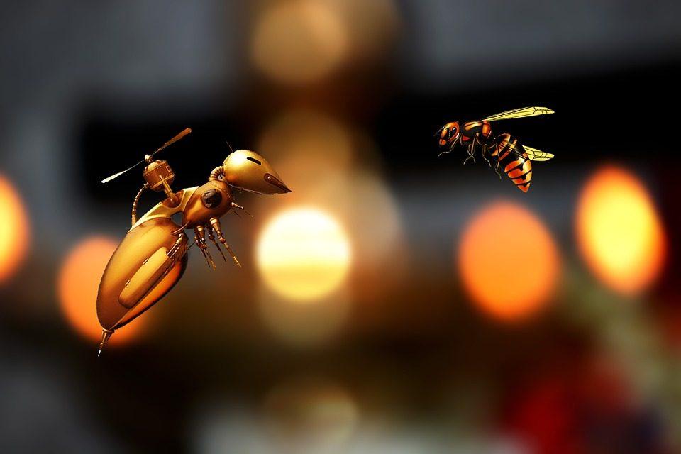 Albinele, veriga in ecosistem