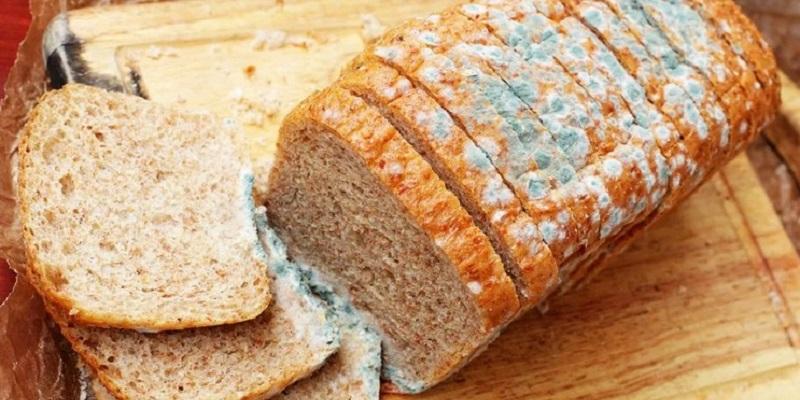 Ce se intampla daca manaci paine mucegaita - I