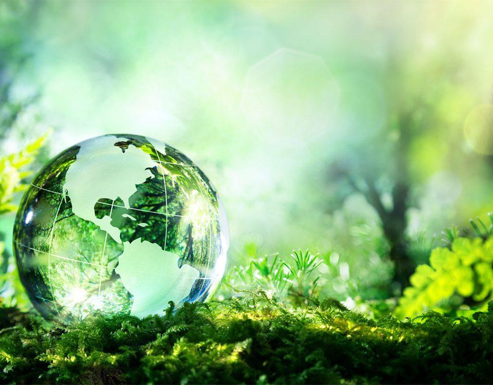 2 metode sa fiti verde