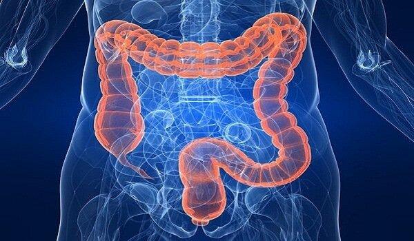 Simptome ale aparitiei unui parazit intestinal